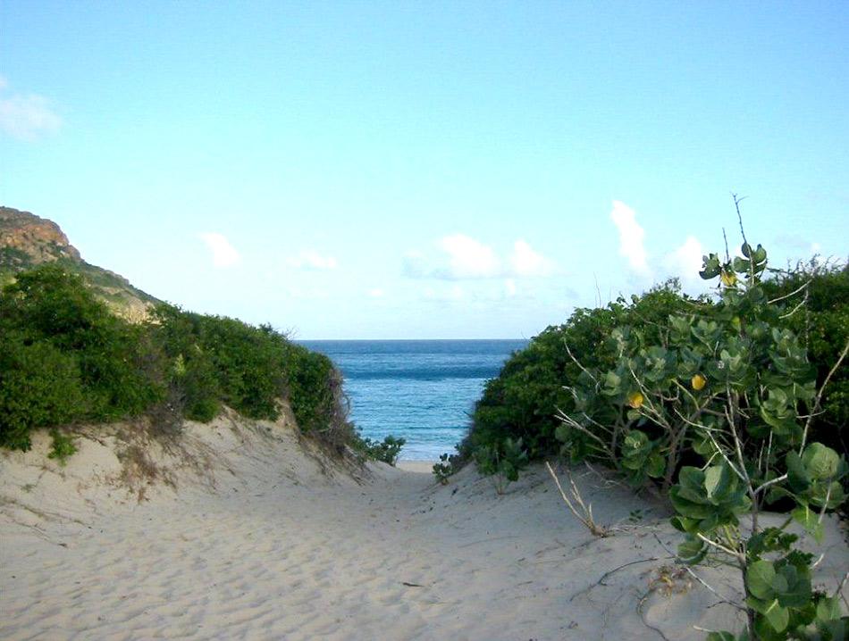 3 of the best nudist beaches on Ibiza | Ibiza Spotlight