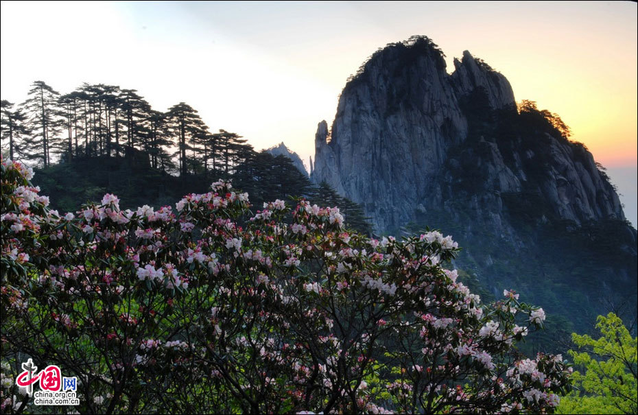 Mount Huangshan in spring - China.org.cn