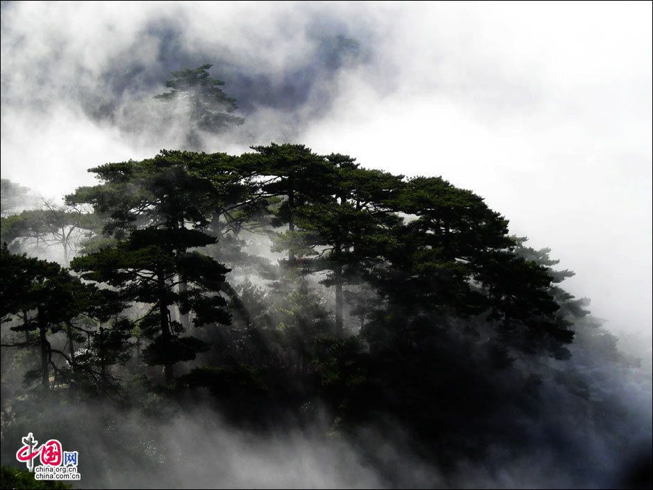 Mount Huangshan in summer - China.org.cn