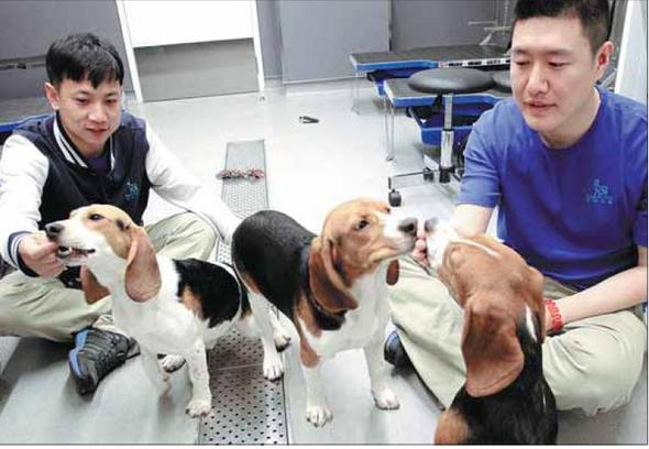 research paper for lab animal course Candidates must have completed a training program in laboratory animal medicine the training program must be research paper: publication requirements.