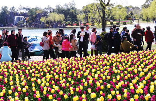 Shanghai tulip festival celebrates Dutch culture