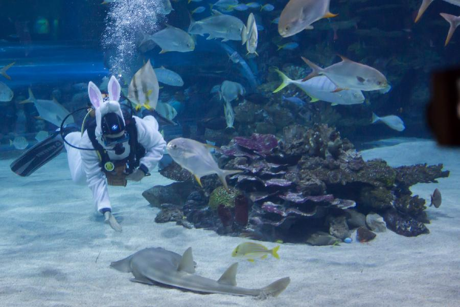 Scuba Diver Marks Easter At Tropicarium In Hungary China