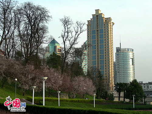 Hefei, one of the 'Top 20 cities with highest average monthly salary' by China.org.cn