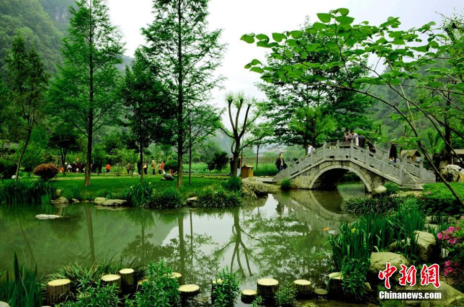 how to get to zhangjiajie national forest park from shanghai