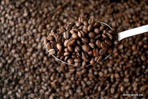 China's coffee market taking time to brew
