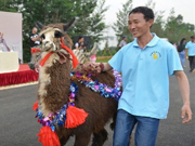 Yunnan wild animal park celebrates 10th anniversary