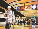 上班族每天乘高铁往返京津上班 每月车费2600元