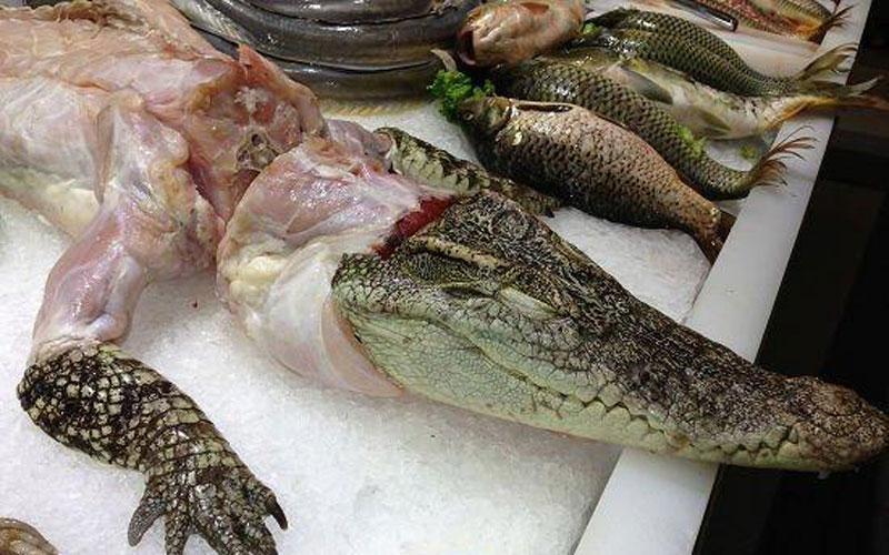 Crocodile Served As Food At A Wedding Banquet China Org Cn