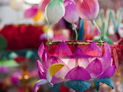Traditional paper lanterns lights up festival