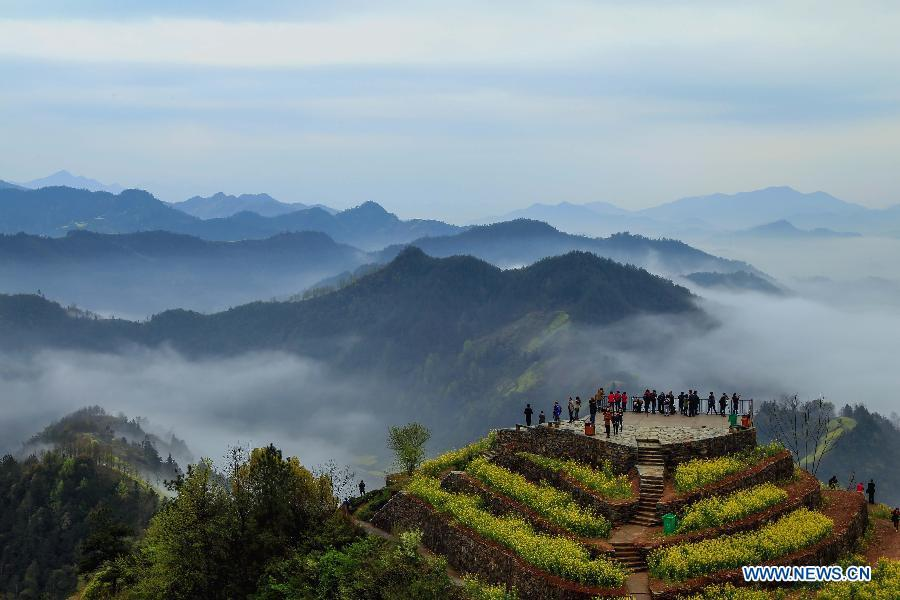 Scenery of sea of clouds in Huangshan - China.org.cn