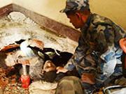 Nepal quake jolts India, 62 killed, 259 injured