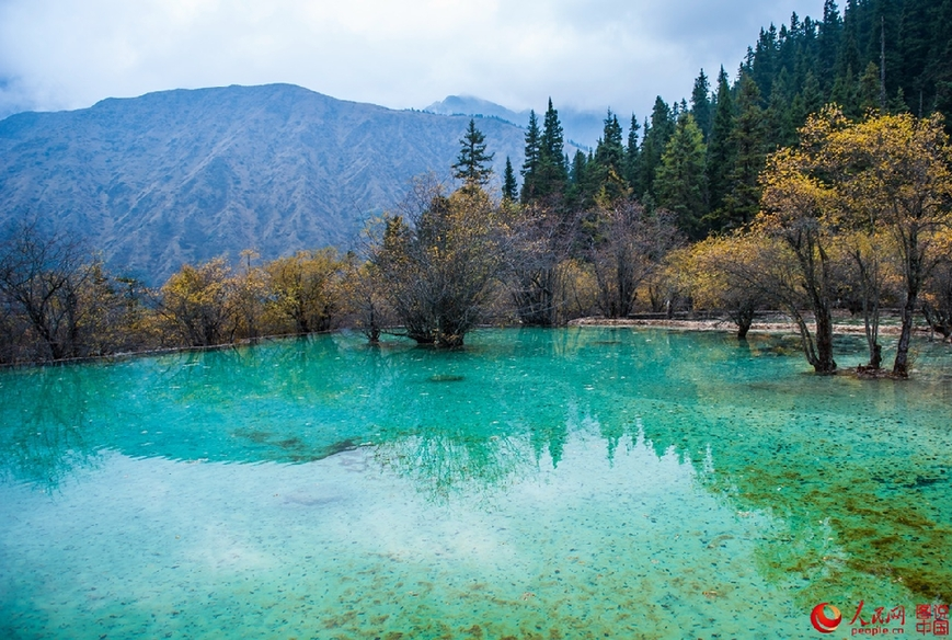 Huanglong: a mysterious and beautiful land - China.org.cn