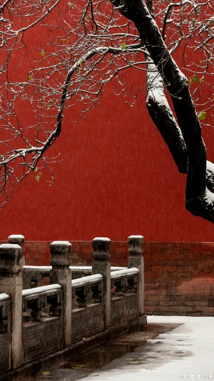 Forbidden City Covered In Snow