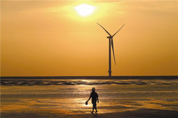 A wind farm at Rudong in Jiangsu province. [Photo by Xu Congjun / for China Daily]