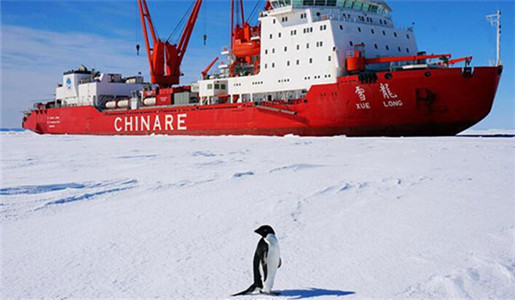 Bidding to start on new polar research ship construction