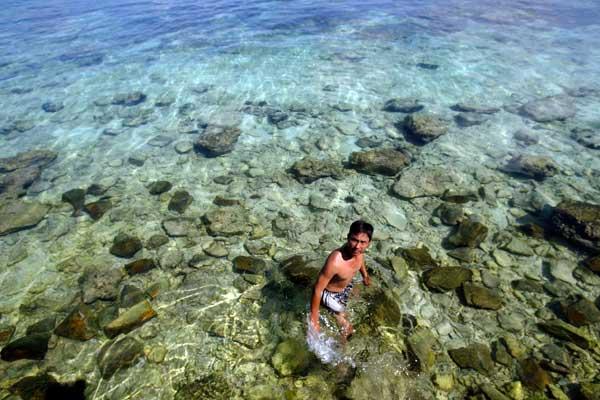 Planting program helps save China's corals- China.org.cn