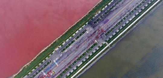 山西运城盐湖呈红绿相间景观