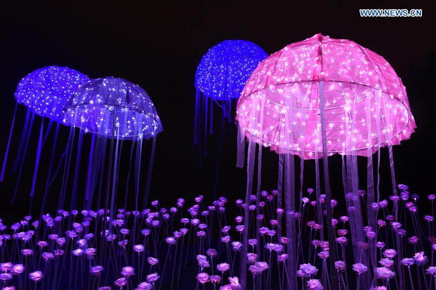Lighting Show Of Led Roses In Se China