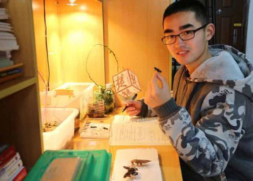 Zhao Yuchen records the breeding process of insects in a notebook in his dormitory. [Photo/Chutian Metropolitan Daily]