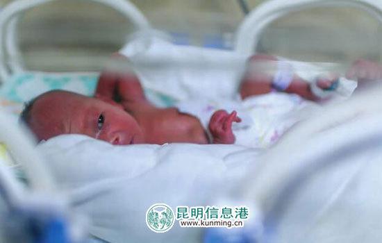 早产女婴还躺在温箱里