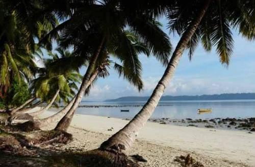 Radhanagar Beach, one of the 'Top 10 beaches in the world 2017' by China.org.cn