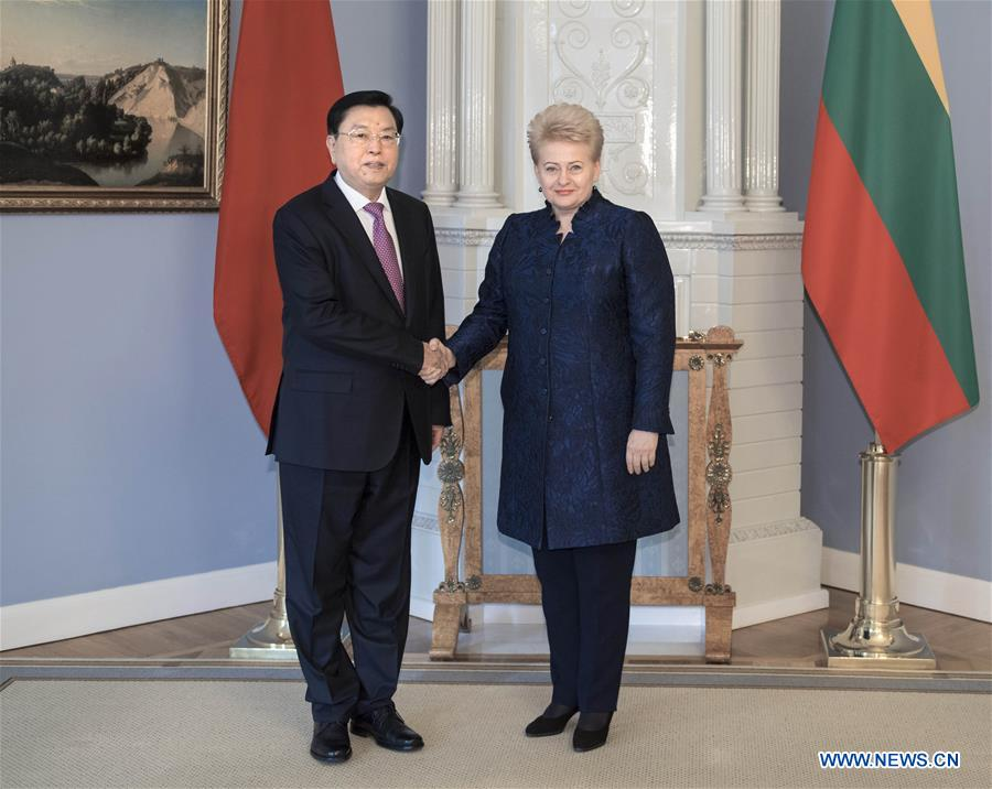 China, Lithuania agree to build stronger ties