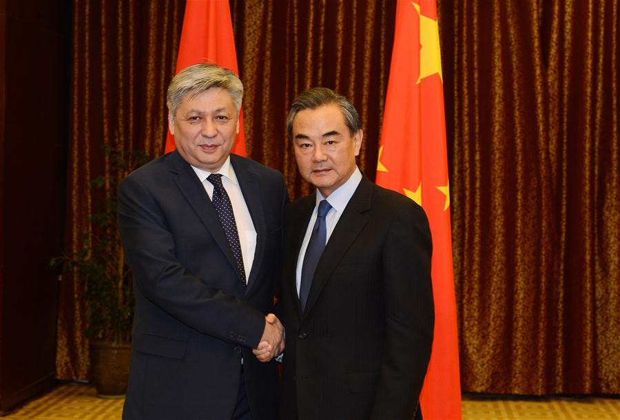 China to push for common prosperity with Kyrgyzstan via Belt and Road: Chinese FM