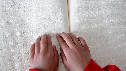 Braille plover masters thesis