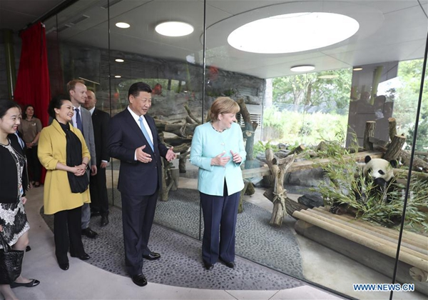 Xi Jinping, Angela Merkel bond over 'panda diplomacy' before G-20 meet