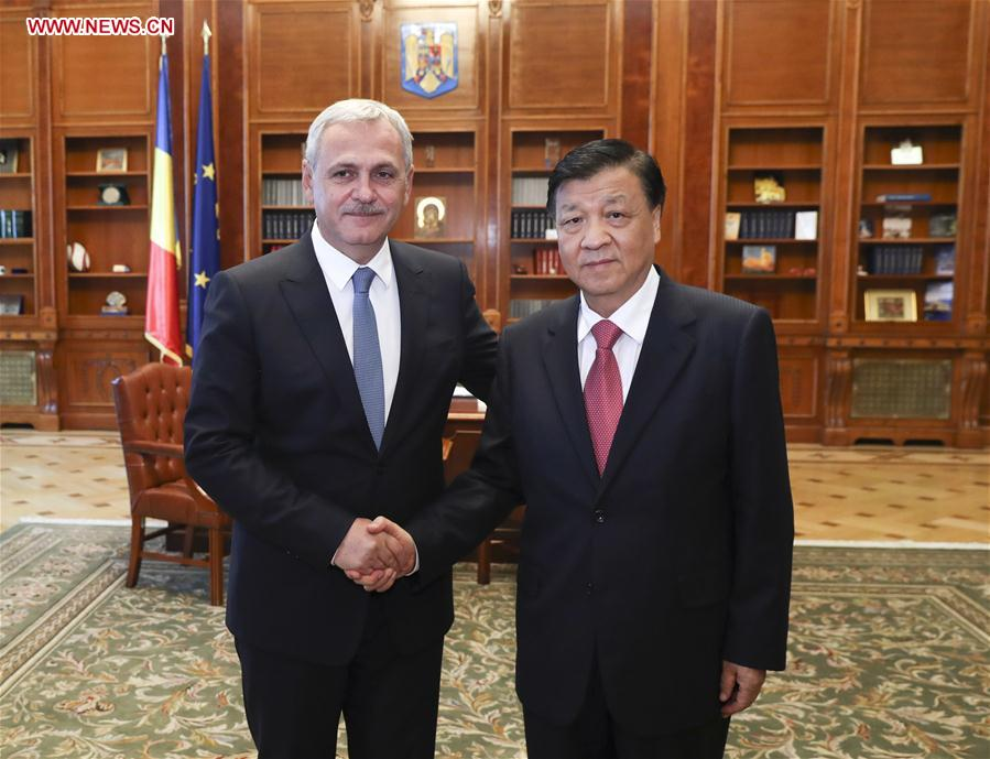 Liu Yunshan (R), a member of the Standing Committee of the Political Bureau of the Communist Party of China (CPC) Central Committee, meets with Liviu Dragnea, chairman of Romania's ruling Social Democratic Party (PSD) and speaker of the Chamber of Deputies, in Bucharest, Romania, July 14, 2017. [Photo/Xinhua]