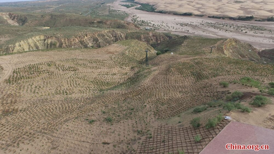 A file photo shows a part of Kubuqi Desert that has turned to green. [Photo provided to China.org.cn]