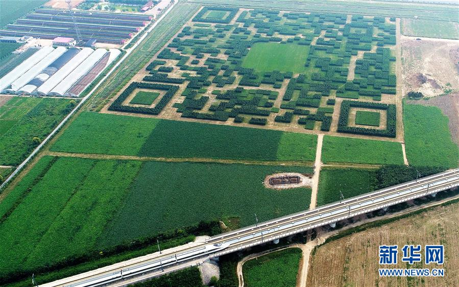 A giant QR code in north China's Hebei Province has left people wondering what to make of the design, which can only be scanned from high above the ground.[Photo/Xinhua]