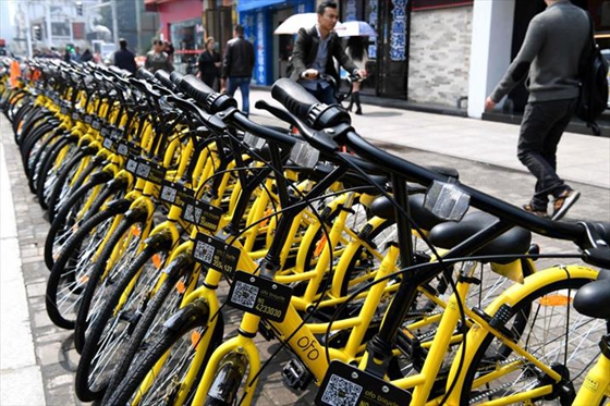 Ofo bikes parked at a subway entrance in Fuzhou, Fujian Province, on March 29, 2017. [Photo/Xinhua]