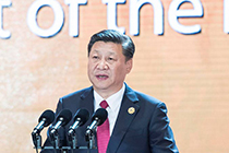 President Xi back home after APEC summit, state visits to Vietnam, Laos