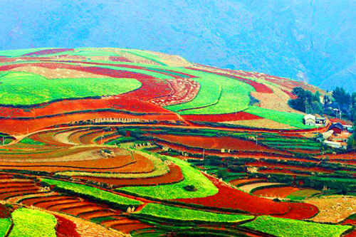 云南今年将完成12个贫困县摘帽 120万人口脱贫任务