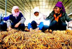 贵州脱贫军令状:今年将减少农村贫困人口100万人