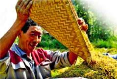重庆脱贫军令状:今年确保59万人整体脱贫