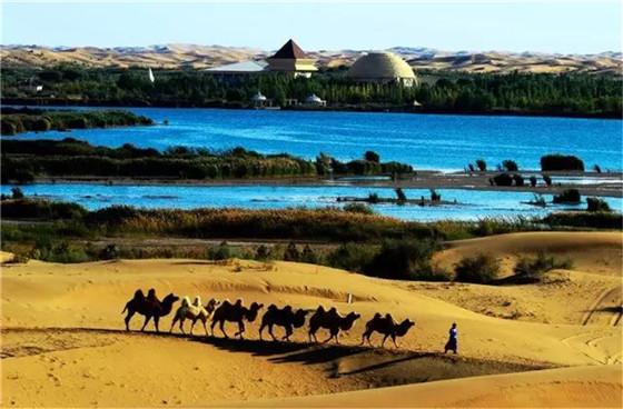 库布其:我们的沙漠,我们的家园