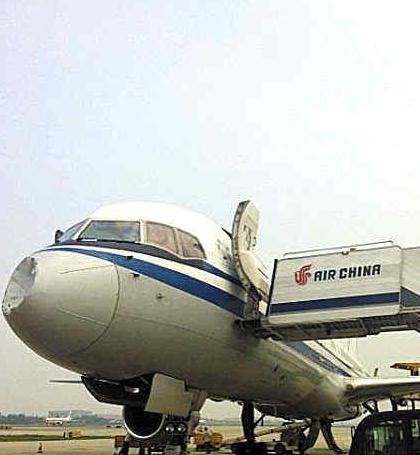 新闻链接:飞鸟撞击飞机事件