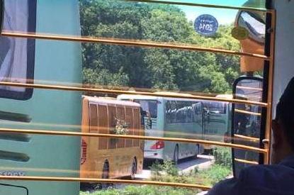 上海野生动物园多辆观光车被困猛兽区