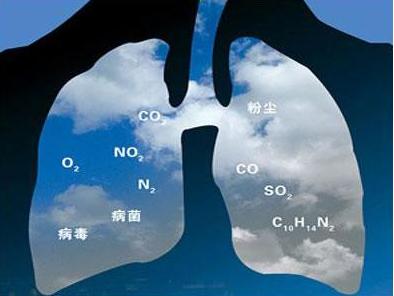 绿盾倡议:世界卫生日,让更多人加入绿色出行-焦点中国网