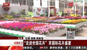 北京新闻:'走进世园花卉' 享国际花卉盛宴