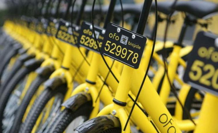 """骑行在分享经济的""""双创""""路上"""