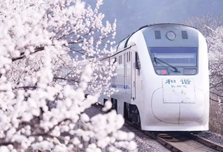 中国这趟6块钱的列车,惊艳了一整个四季!