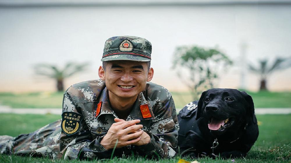 特寫:中越邊境邊防緝毒犬的日常生活
