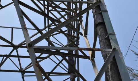 早前仅仅因为花莲一座民营电塔被台风吹倒,台当局便下令公务员办公不