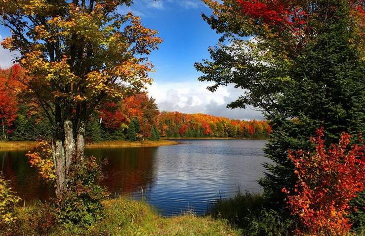 云南昆明:景区层林尽染 感受秋之静美