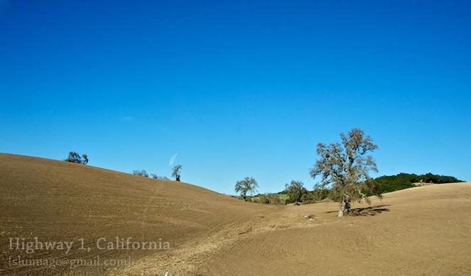 Красивые пейзажи вдоль автодороги номер 1 в штате Калифорния США2