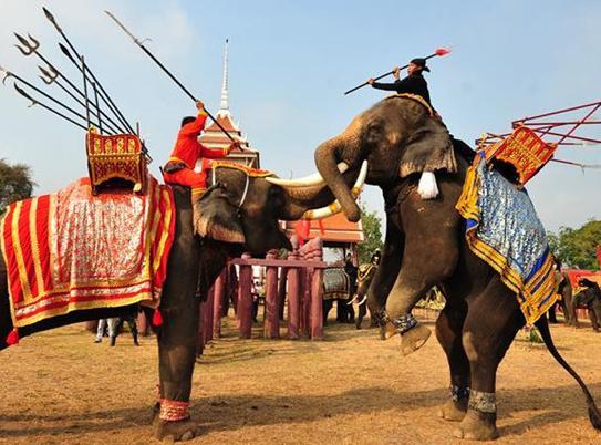 Evento para conmemorar el Día Nacional del Elefante de Tailandia en Ayutthaya