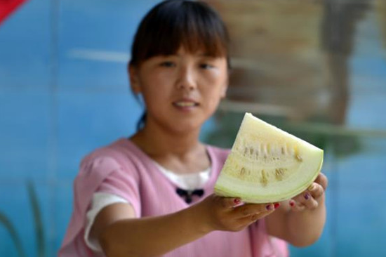 Melón con color blanco de Hebei